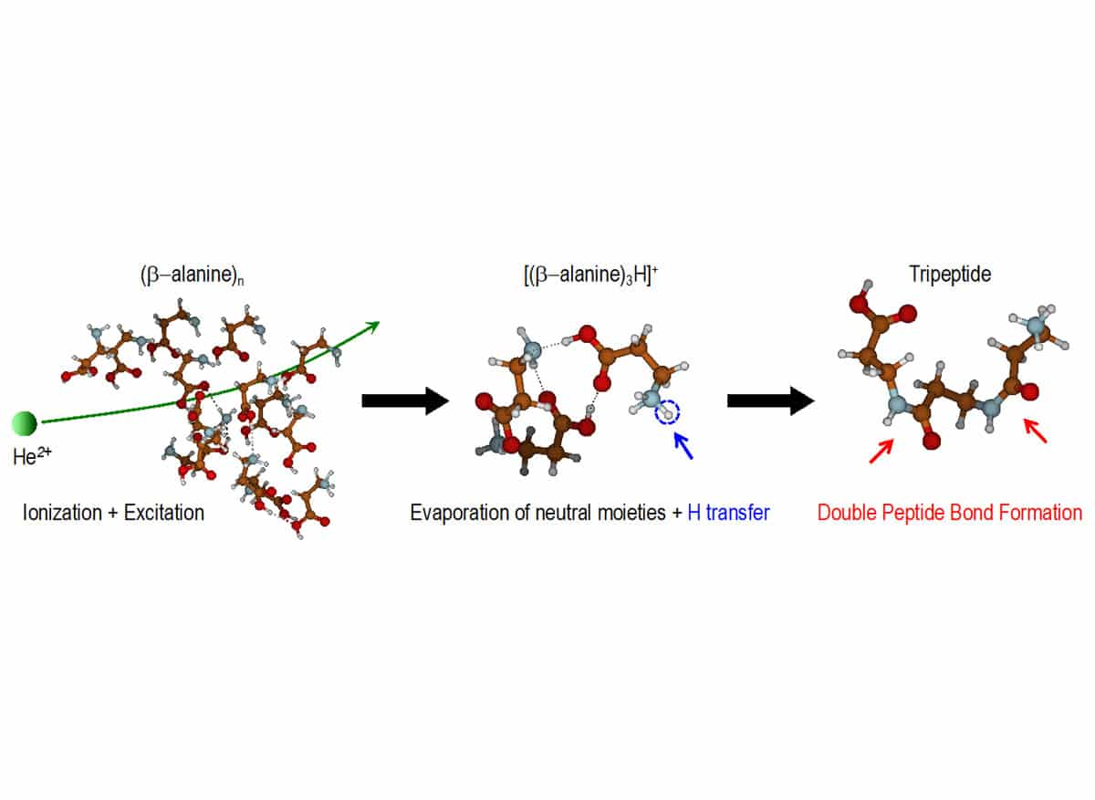 schematic representation of peptide bond formation in ion-cluster collisions